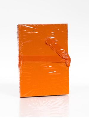 album leporello 10x15/12 narancs